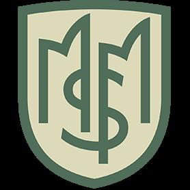 MSM Advisors Site Icon