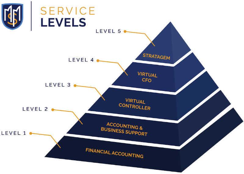 MSM Advisors Service Level Graphic